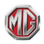 Car curtain_MG
